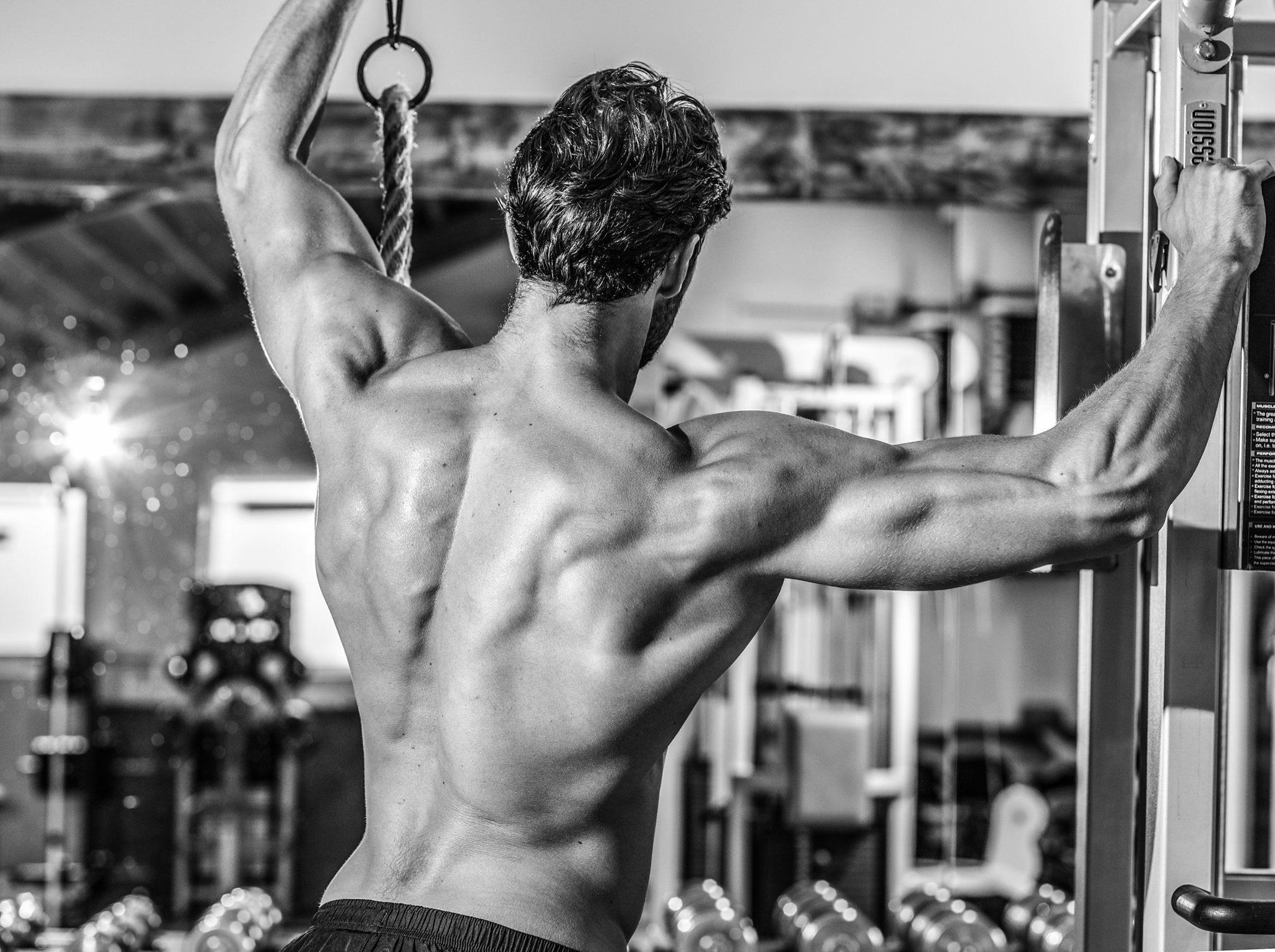 Vetverlies-en-spieropbouw-tegelijk-mogelijk-muscle